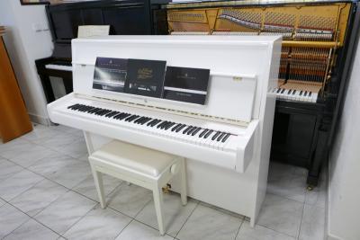 P1390503