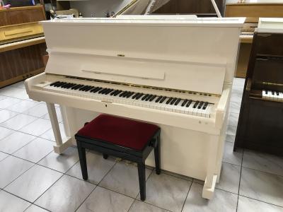 Krásné bílé pianino, r. v. 2010