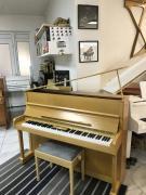 Pianino The Betting - Bohemia Czech Republic.
