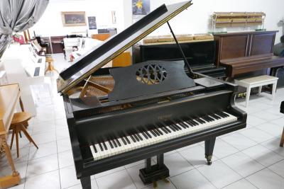 P1350198
