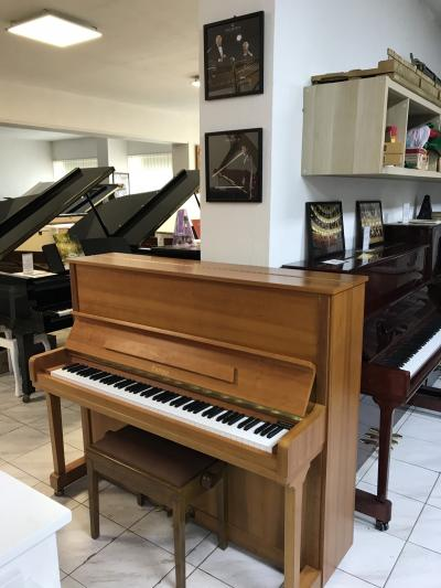 PIANINO C. BECHSTEIN - EUROPA MODEL 120.