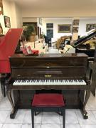 Pianino PETROF ROCOCO sezárukou 2 roky.